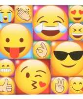13x emoji emoticon memo magneten type 2