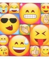 13x emoji emoticon memo magneten type 3
